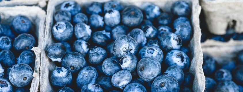 blueberries and food intolerance
